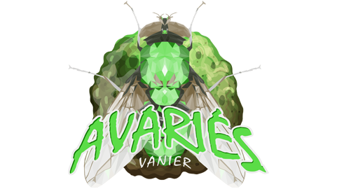 avaries-vanier-3